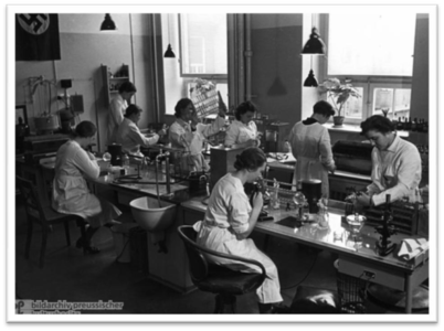 Laboratory workers at the Institute for Hygiene in Hamburg, Germany, in 1937